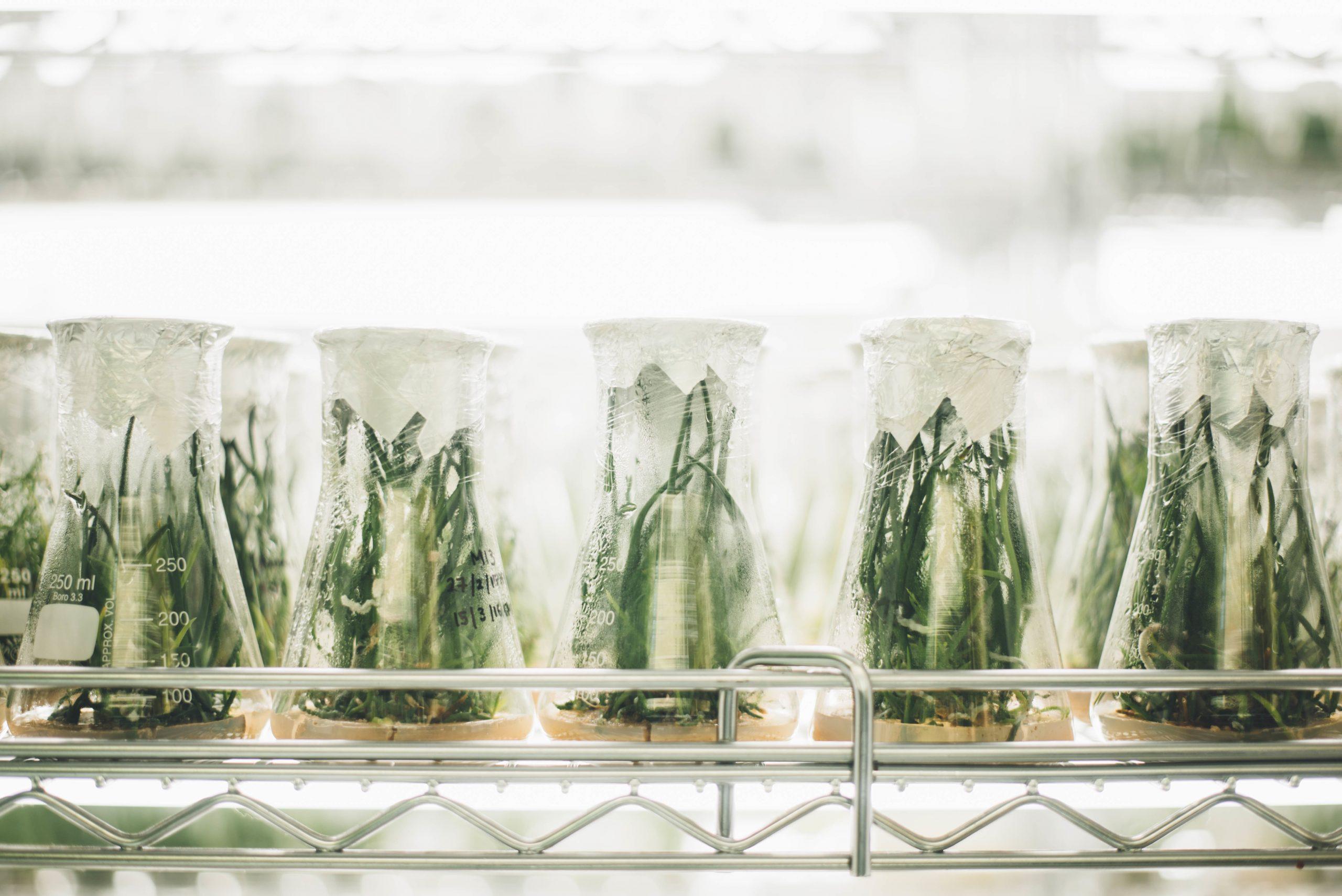 Quelle science à l'ère de l'anthropocène ?