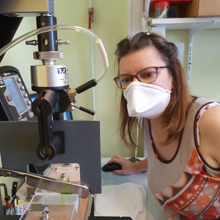 test de guillotine : mesure des propriétés biomécaniques des feuilles