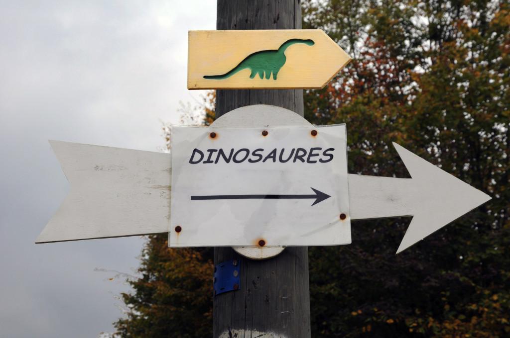 En photos : sur les traces des dinosaures
