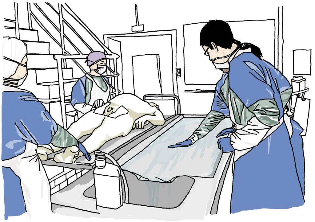 Médecine légale à Lyon : la mort et les vivants