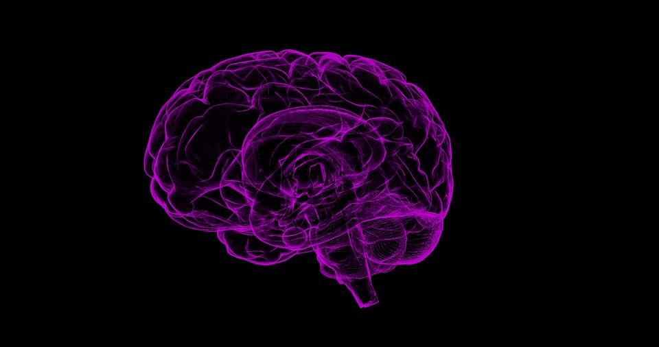 Les signaux venus du cerveau, une langue étrangère
