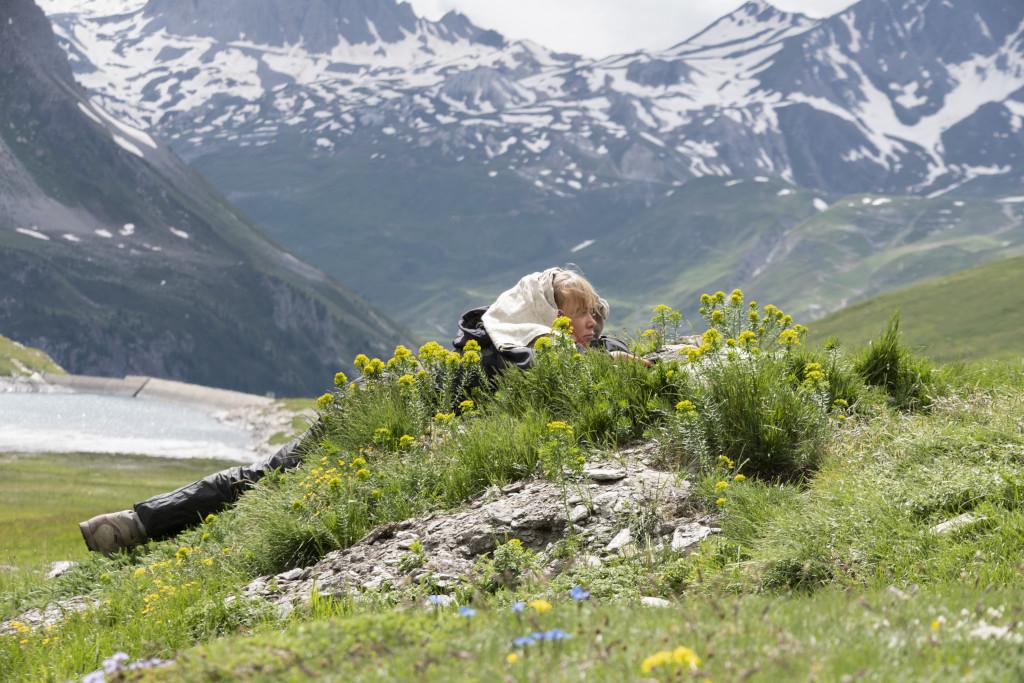 La marmotte alpine - Natacha s'approche doucement du terrier des marmottes alpines