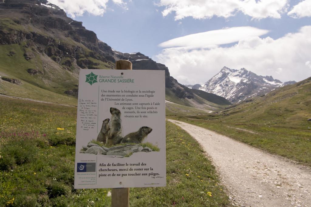 Les marmottes alpines - entrée dans la zone d'observation de la marmotte alpine, dans la réserve de la Grande Sassière